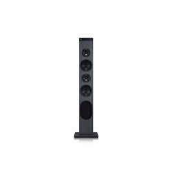 Audio Porttil LG RL3
